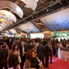 FITUR 2013, gran encuentro internacional del negocio turístico
