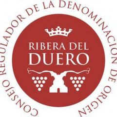 Y el Oscar de los vinos es para… Ribera del Duero
