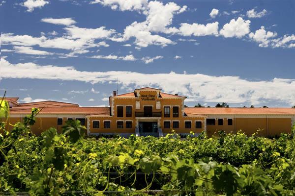 Turismo enologico-Ruta del Vino de Rueda-Bodega Real Sitio de Ventosilla