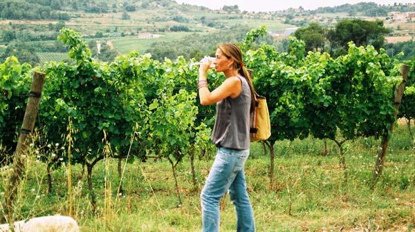 Turismo enologico-Ruta del Vino de Rueda4
