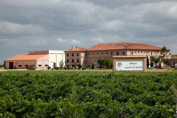 Turismo Enologico-CEA Presenta las Bodegas Castelo Medina4