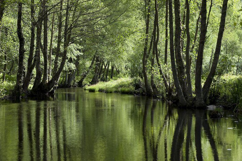 Río Sabor, en el Parque Natural de Montesiño. Foto: Open Comunicación