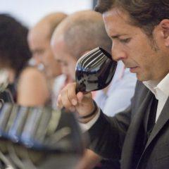 Los mejores vinos de España según La Nariz de Oro